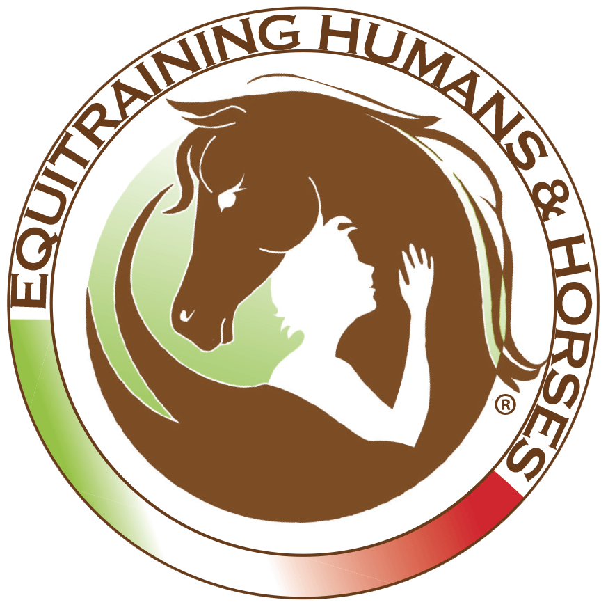 Equitraining H&H